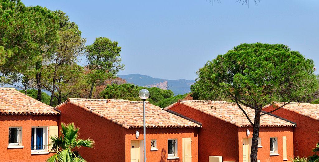 Bienvenue à Roquebrune sur Argens