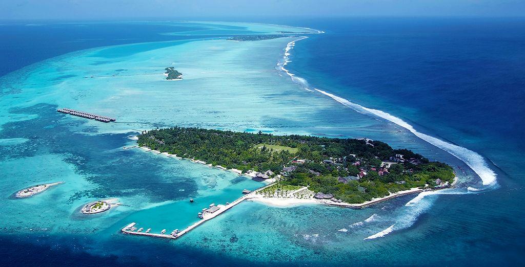 Découvrez la petite île de Lhohifushi