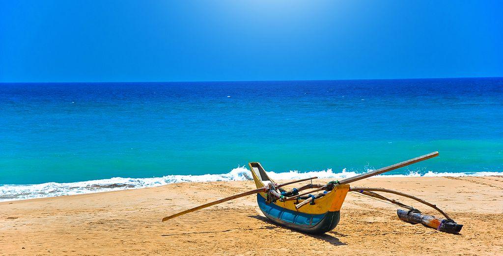 Vous fait découvrir toute la beauté du Sri Lanka