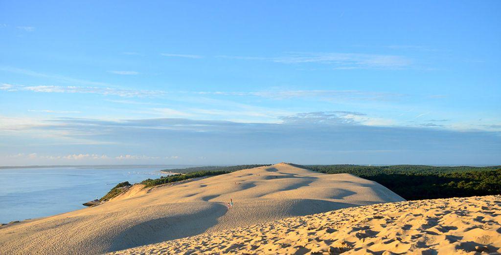 Admirez la vue panoramique au sommet de la dune du Pilat
