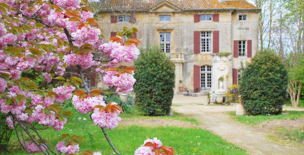 Bienvenue au Château de Roussan