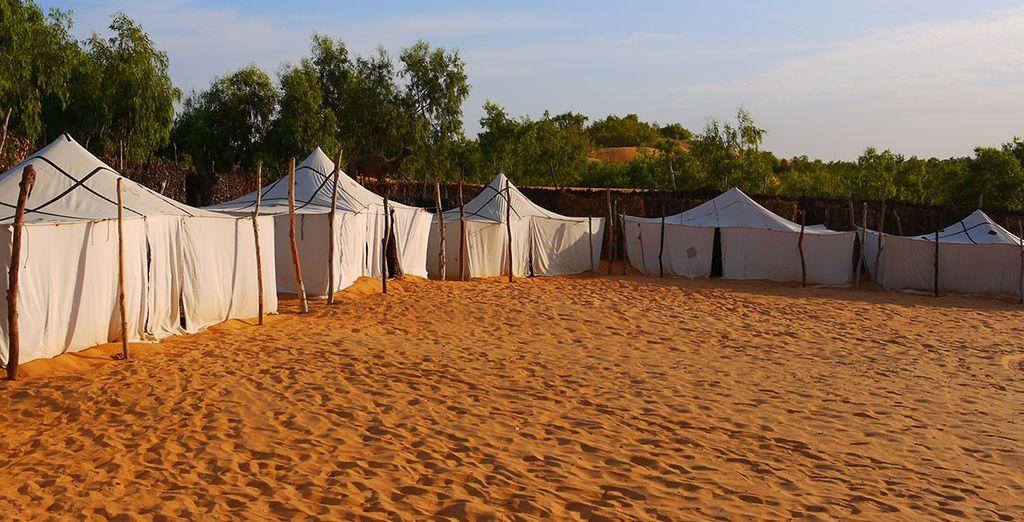 Entre tentes et bungalows...