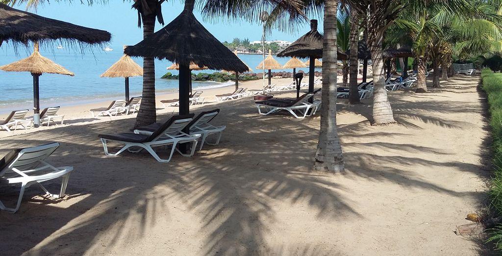 Les pieds dans le sable de la Petite Côte