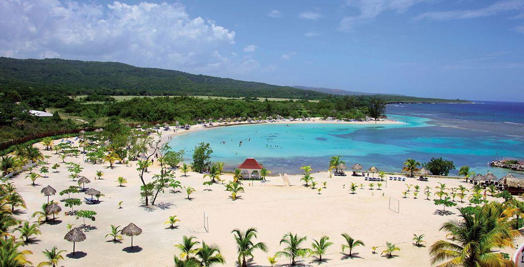 Découvrez la Jamaïque...
