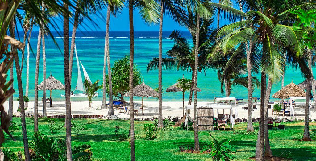 Entre sable blanc, eaux turquoise et cocotiers...