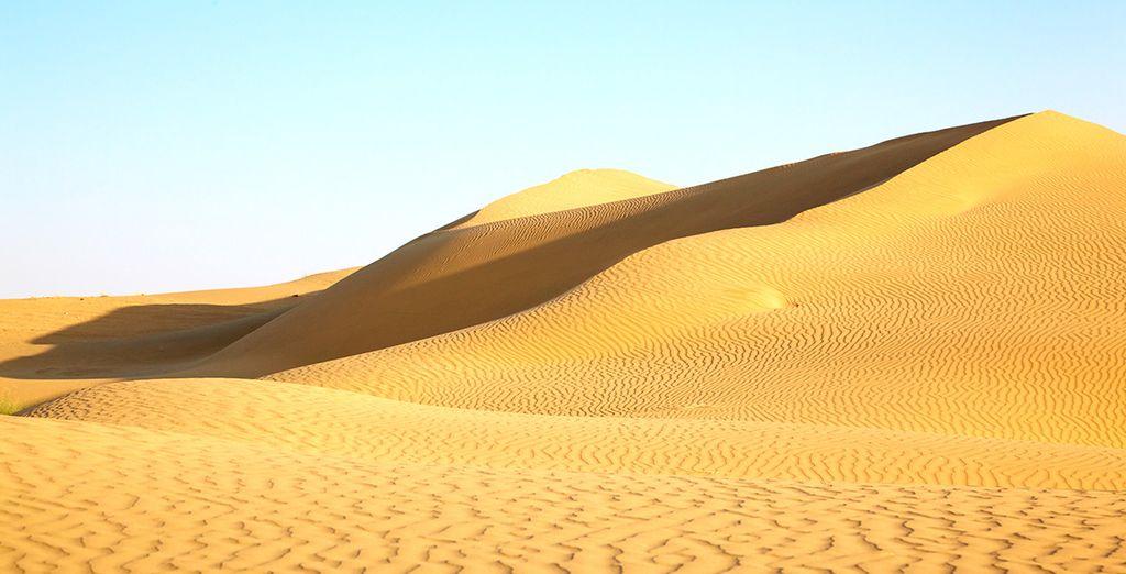 Ocre dans le désert du Thar...