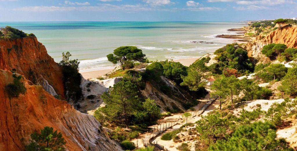 Situé en Algarve