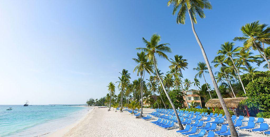 Alternez détente sur une plage de rêve
