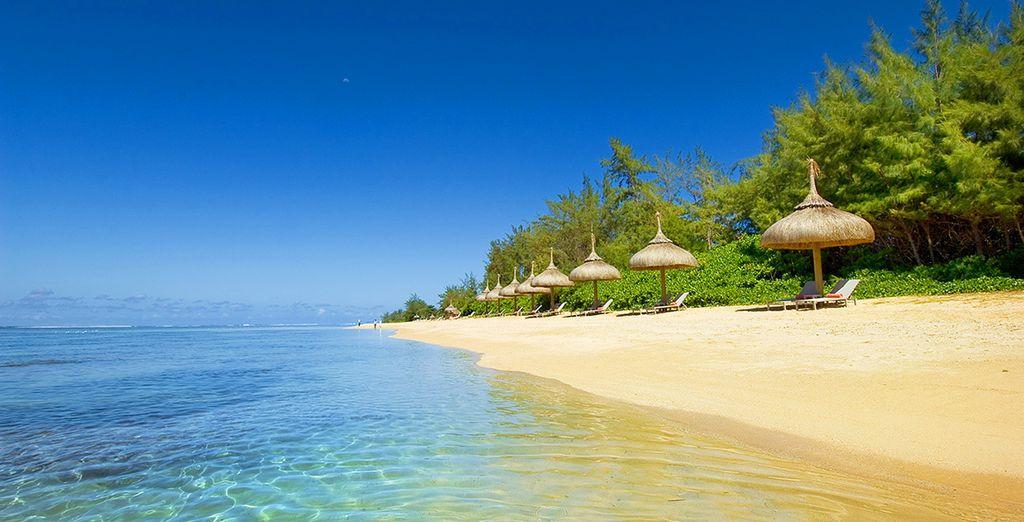 Au bord d'une plage de sable fin