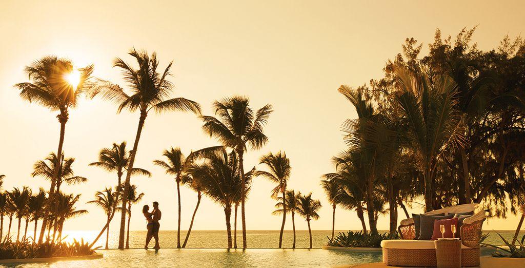 Succombez à ce petit paradis luxueux...