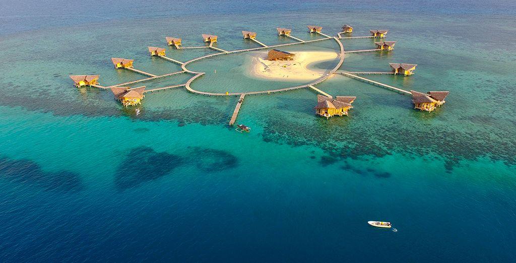 Partez pour l'île de l'amour en choisissant l'extension...