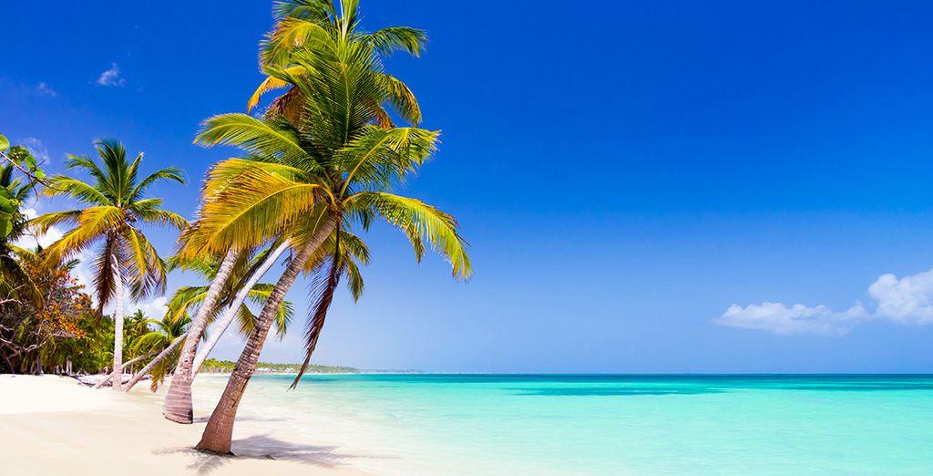 Passez un excellent séjour en République Dominicaine !