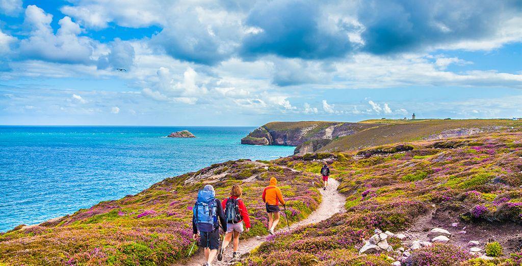 Paysage de la Bretagne et vue sur la Manche