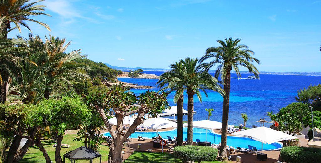 Paysage de Palma de Majorque