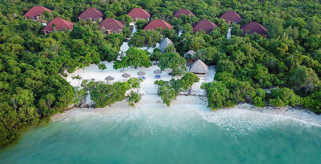Pearl Beach Resort 4* et safari possible