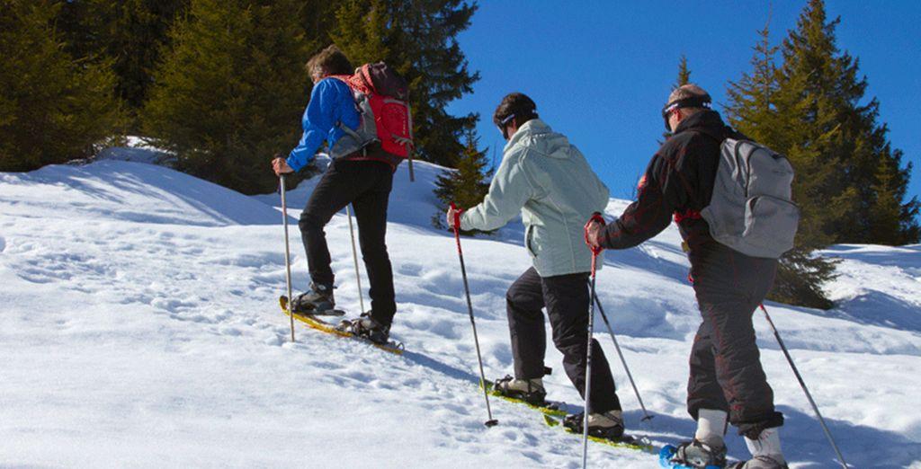 En skis ou en raquettes