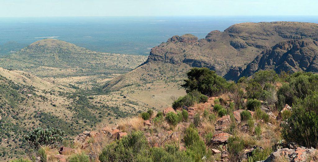 Au coeur des montagnes Waterberg - Séjour Safari 7 nuits en Réserve Privée Johannesburg