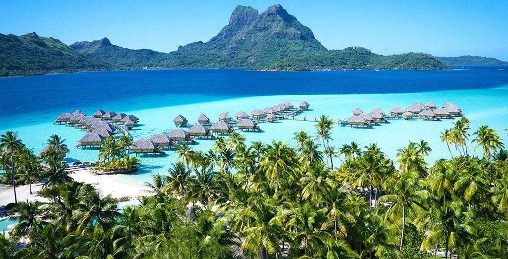 Au sublime Bora Bora Pearl Resort & Spa 4* sup membre des Leading Hotels of the World