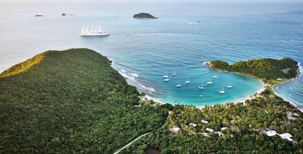 Croisière Club Med 2 Martinique, Îles Vierges, St Barthélémy, Antigua et Guadeloupe
