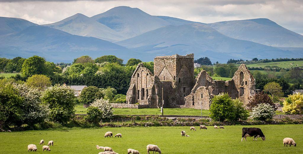 Votre traversée de l'Irlande s'effectuera avec la nature verdoyante en fil rouge...