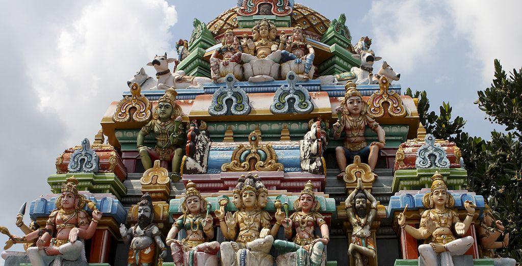 Tombez sous le charme de Madras