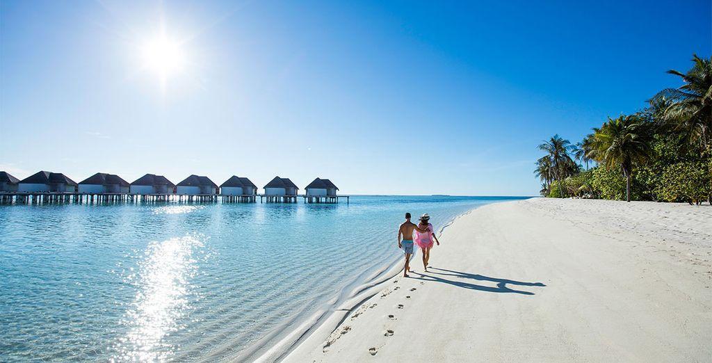 Fermez les yeux... et envolez-vous pour les Maldives