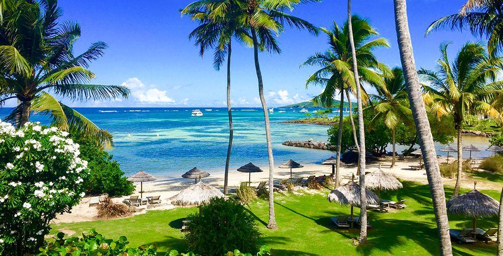 Vous rêvez d'un séjour d'exception ? - Hôtel Cap Est Lagoon Resort & Spa 4* Le François