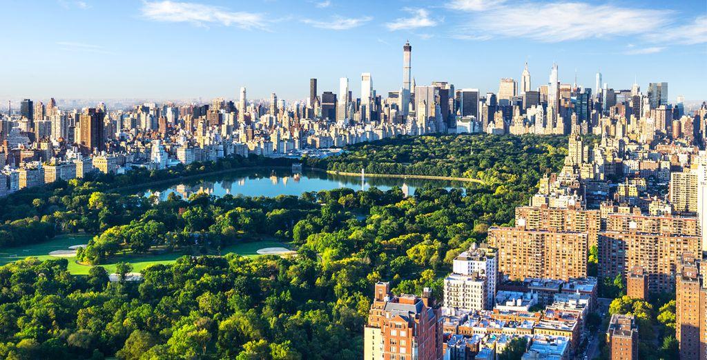 Profitez de faire un pique-nique dans Central Park