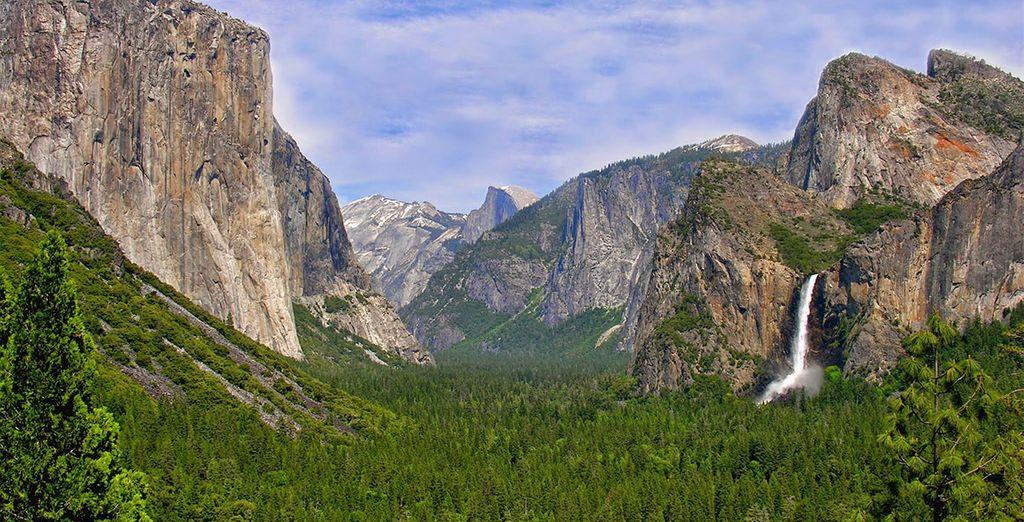 Changement complet de décor avec l'arrivée dans le très vert Yosemite National Park !