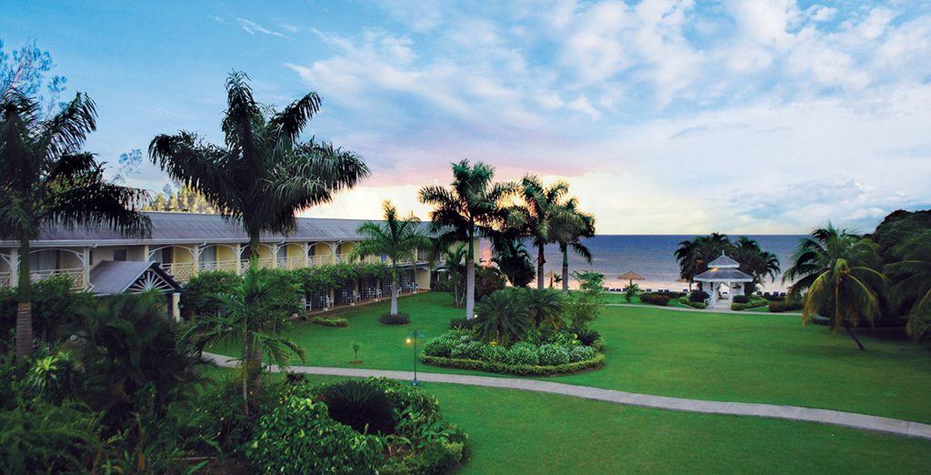 Détendez-vous dans le jardin de l'hôtel
