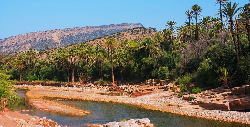 & découvrez toutes les beautés d'Agadir !