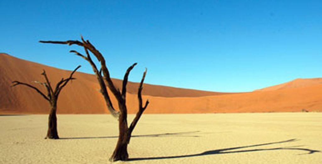 - Circuit l'Essentiel de la Namibie 3 &4* - Windhoek - Namibie  Windhoek