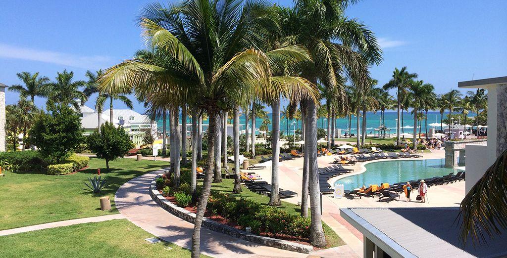 L'hôtel Memories Gand Bahama vous accueillera dans son cadre merveilleux