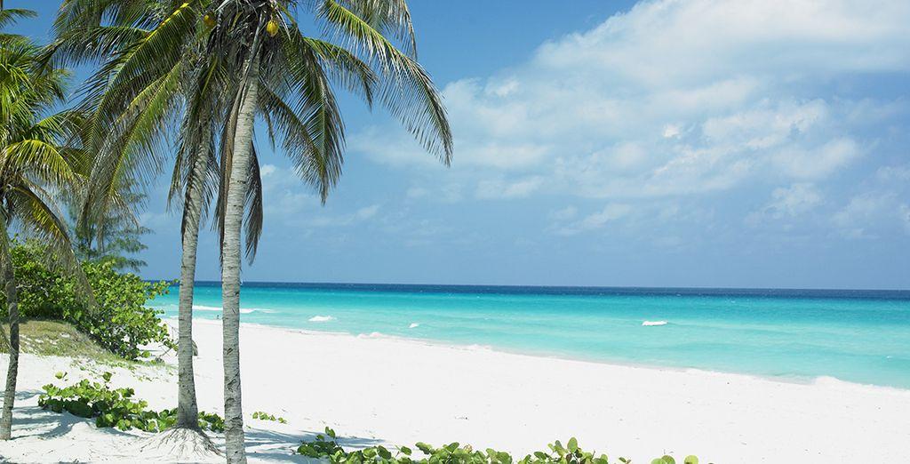 Puis vous serez émerveillé par les plages et paysages du nord... Excellent séjour à Cuba !