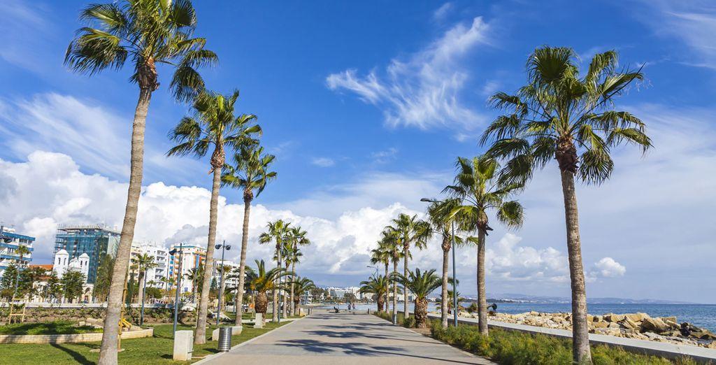 Partez ensuite à la découverte de la belle ville de Limassol...