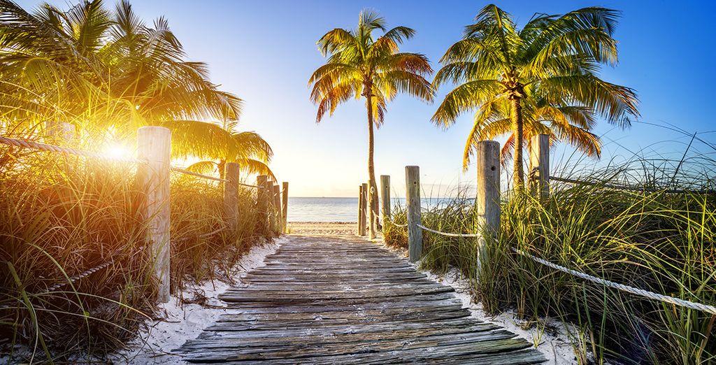 Vous prendrez ensuite la direction de l'île la plus méridionale de l'archipel des keys, Key West