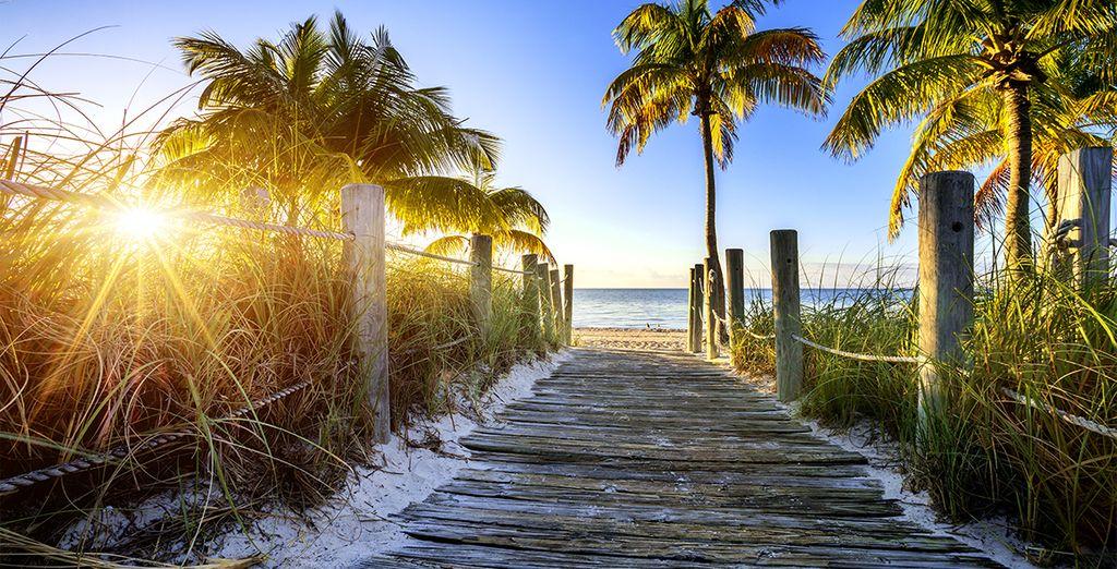 Cette photo vous fait rêver ? Mais serait-ce Miami ou bien Cancun ? Venez le découvrir par vous même !
