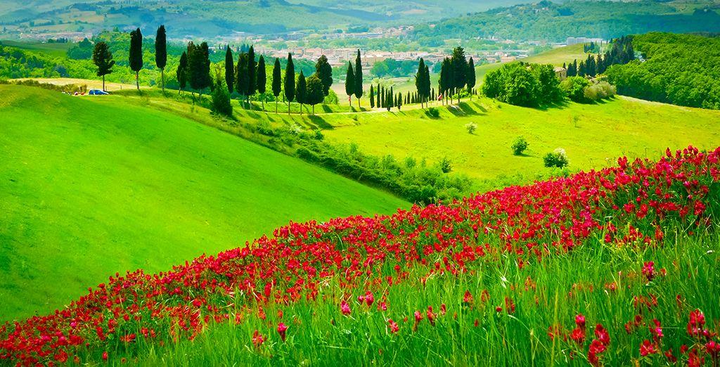 Vous reviendrez enchanté de votre séjour en Toscane.