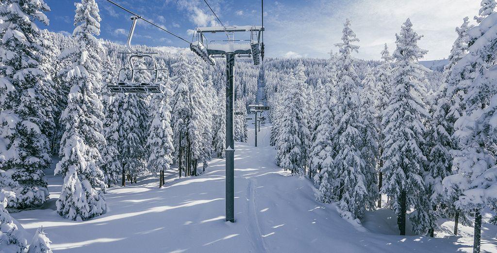 Du domaine skiable San Bernardo