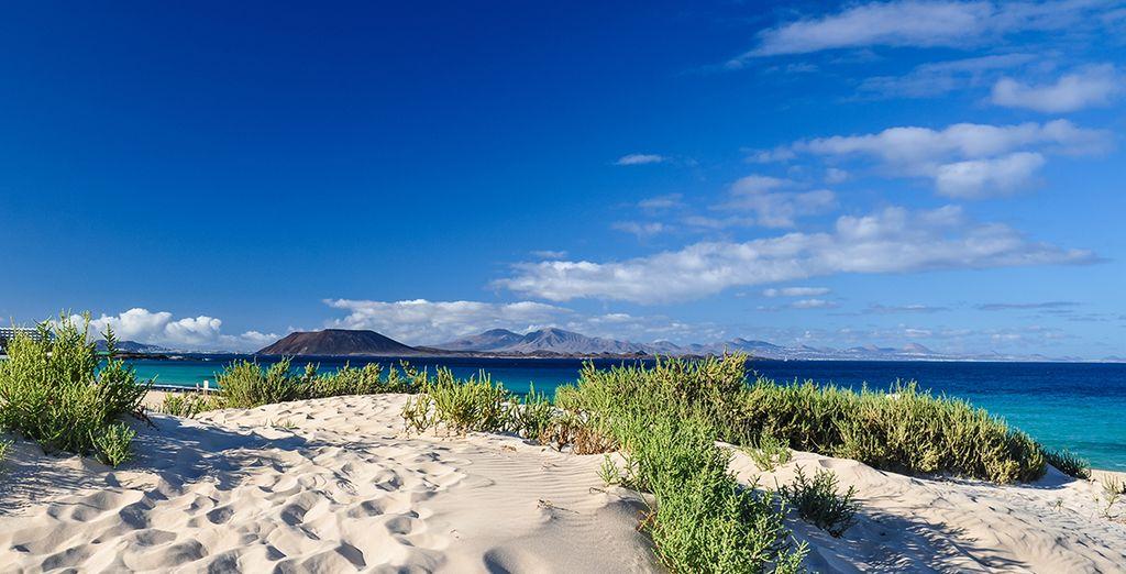 Paysage de Fuerteventura face à l'Atlantique