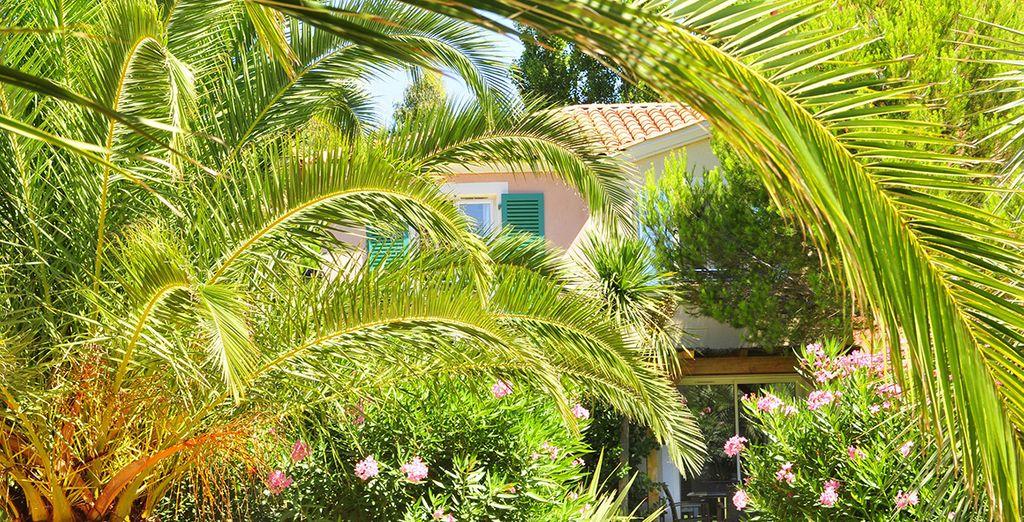 Votre maison sera équipée d'un balcon ou d'une terrasse...