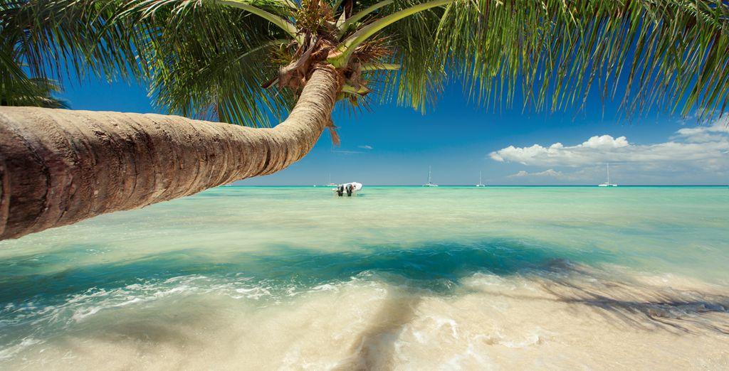 Découvrez Punta Cana avec Voyage Privé