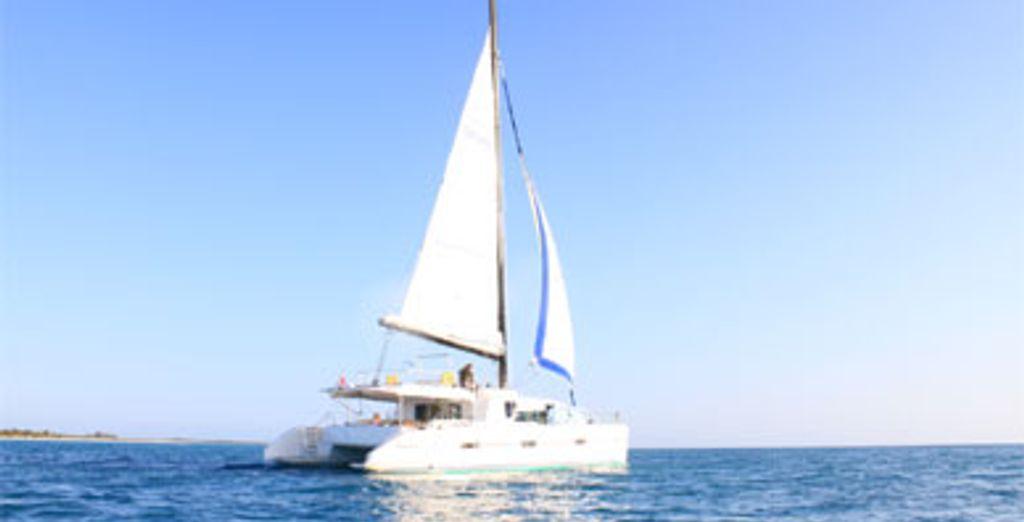 - Croisière Dream Yacht :