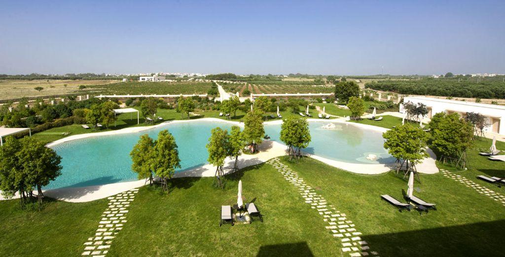 Volete trascorrere una vacanza in Puglia?