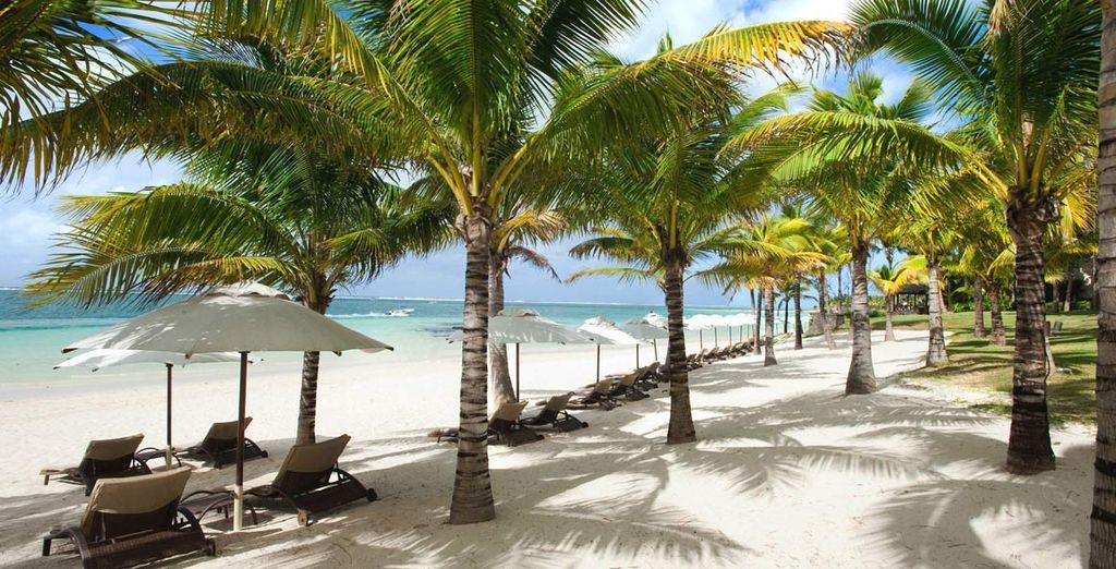 Vi innamorerete della stupenda spiaggia di sabbia bianca