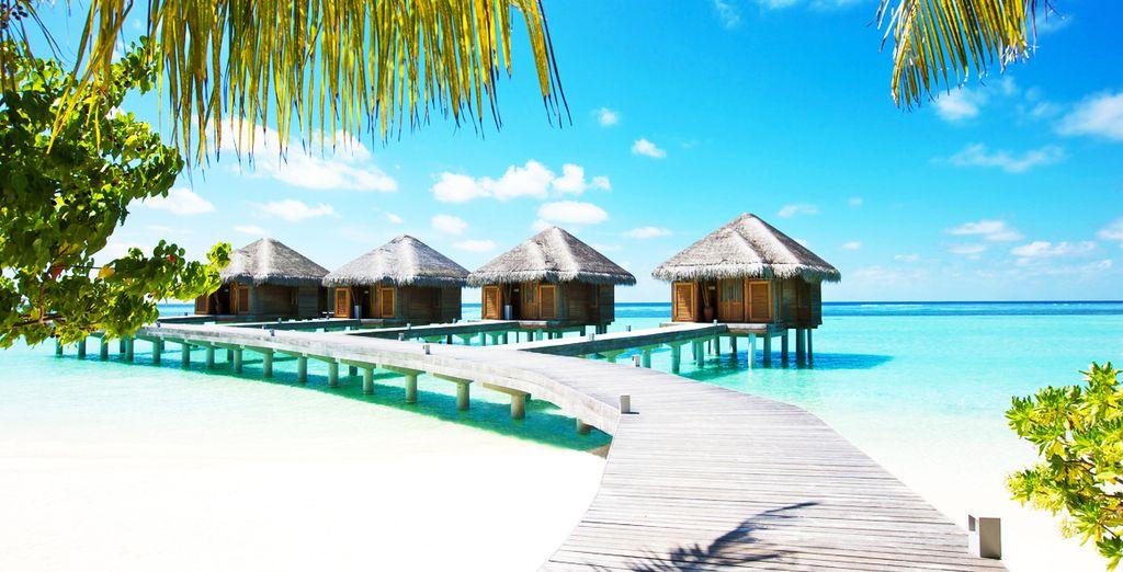 LUX South Ari Atoll 5* Voyage Privé : fino a -70%