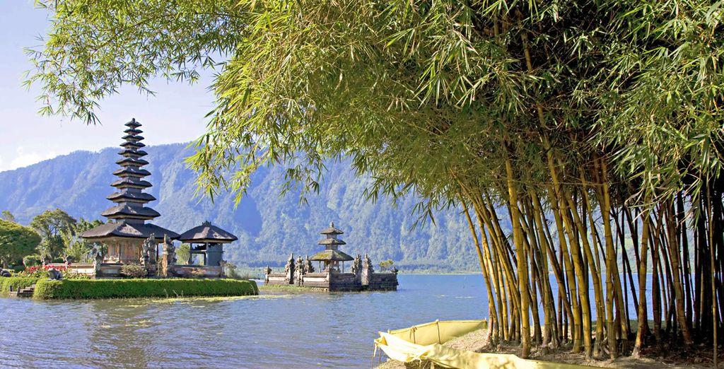 Fotografia di Bali, tra bambù e architettura affascinante