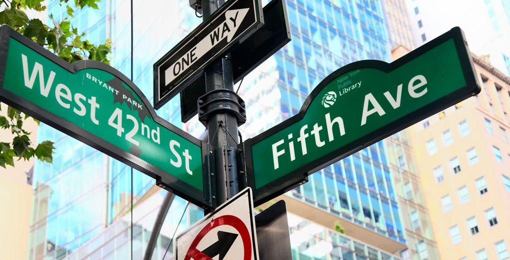 ... o passeggiate per la famosa Fifth Avenue!