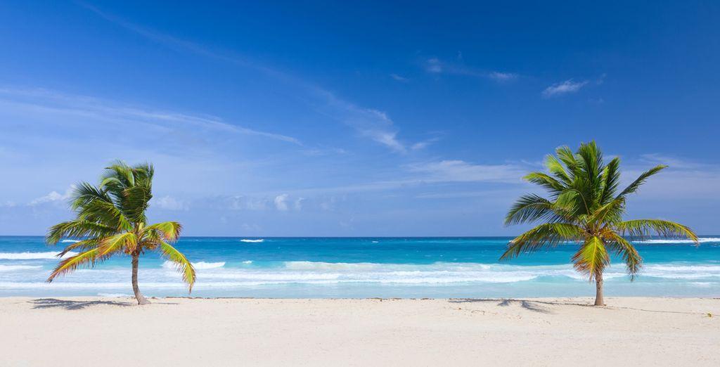 Scoprite le meraviglie di Punta Cana