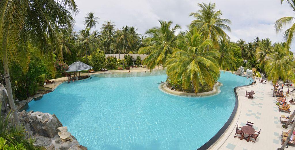 LA piscina è l'ideale per un tuffo o per rilassarsi